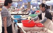 泰州河虾每斤价格破百 预计国庆后下跌
