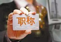 """青年教师职称评定乱象:""""七年老店""""挂名出专著"""