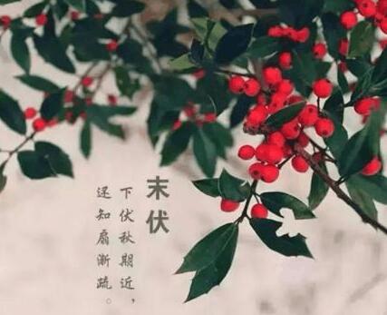 荆州将迎新一轮降水 周末最高温跌破30℃