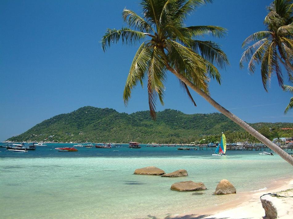 炎热夏季去海边喝椰汁吹海风吧