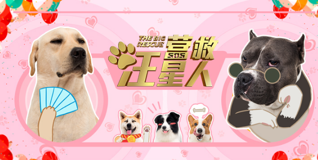 """电影《营救汪星人》""""11罗汉犬""""表情萌态十足"""