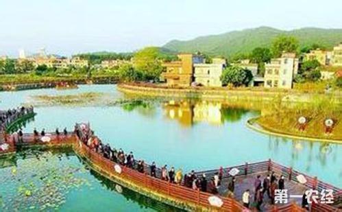 大批市级生态村出炉了!惠州71个村获评市级生态村