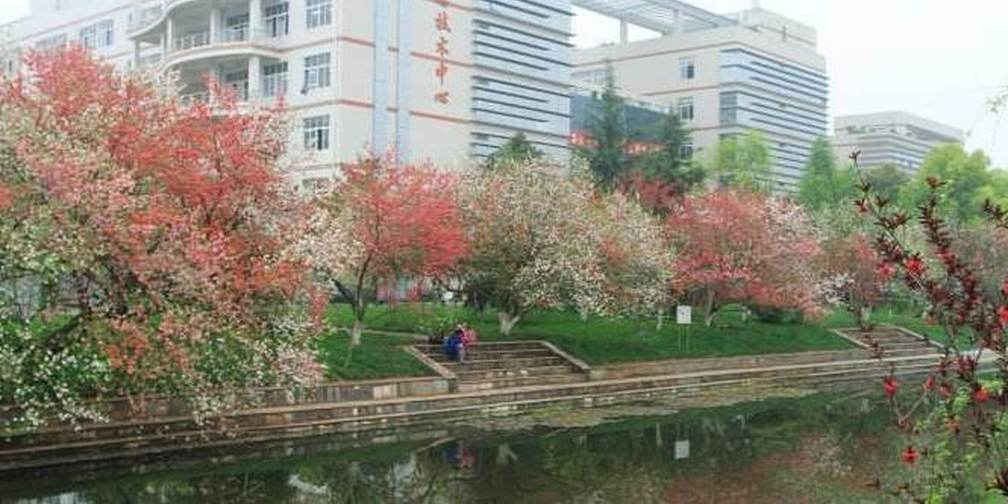 中国最好大学500强排名发布 湖北21所高校上