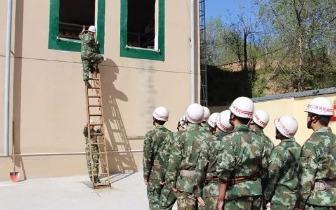 三门峡消防部门组织开展6米拉梯攀爬训练