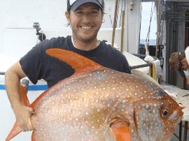 美国渔民捕获巨型海鱼 大小如卡车轮胎