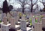 冀中开展扫墓活动