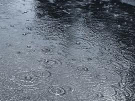 今年青岛天气会咋样?专家:可能天热点雨多点