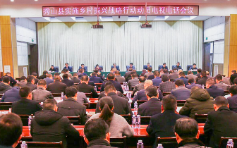 秀山书记王杰:把实施乡村振兴战略摆在优先位置