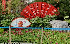 郑州市第八届海棠文化节开幕