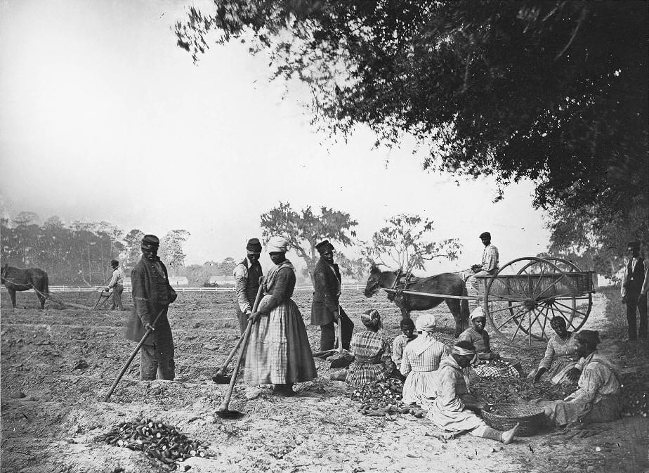 1862年,美国一处种植园景象。/Wikipedia