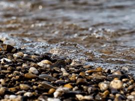 湖南河长制制度体系初步构建 重大污染事故一票否决