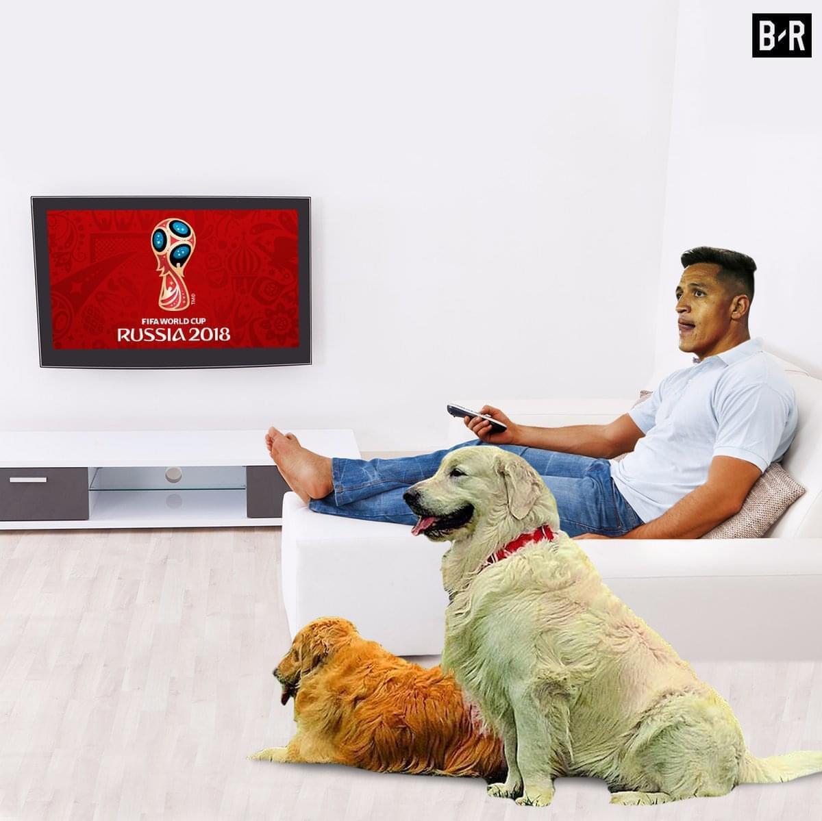 南美太可怕!美洲冠军无缘世界杯 阿根廷胜利大逃亡