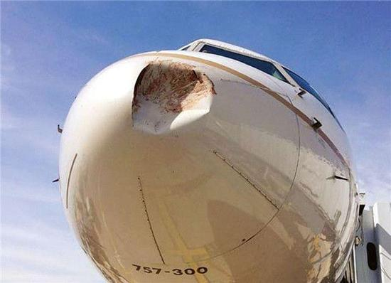 资料图:波音757飞机遭鸟击受损。 文章来源微信公众号: 烽火军事。 美国《航空周刊》2016年10月7日文章指出,根据美国联邦航空管理局的国家野生动物撞击数据库,1990年1月1日到2015年12月31日之间,共有177269起野生动物撞击民用航空器的报告。时间最近的一项对比是,2015年共发生了13162此类事件(鸟类撞击占了97%),而2009年(该机构首次向外界公布数据)只有9540起。 从全球范围来看,2011年到2014年,国际民航组织(ICAO)报告了65139起撞鸟事件,发生此类事件的机