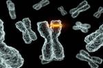 遗传的癌症需注意 这四大类要早筛
