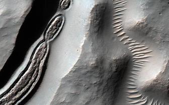 NASA公布火星照 陨石坑似菌状曾有冰川流动