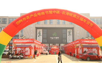 台州市首届农产品电商节暨中国·农港城第三届年货节盛大启幕