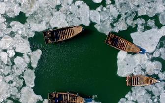 仿佛世界静止 辽宁大批渔船被冻海面