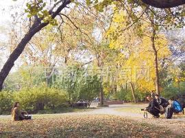 深秋时节的唐山五彩斑斓如诗如画让人沉醉