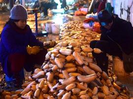 凌晨郴州系列:菜农,为了幸福生活辛苦打拼