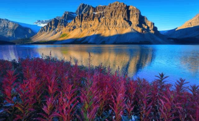加拿大150岁生日全部国家公园免费 哪个国家公园是你的