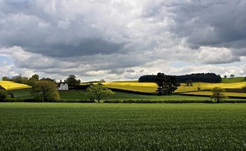 昆明今年将培育100个家庭农场 建8个都市农庄