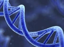 """基因催人老?传说中的""""基因护肤""""靠谱么?"""