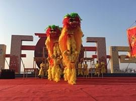 """临海""""黄沙狮子""""迷倒中原数万观众"""