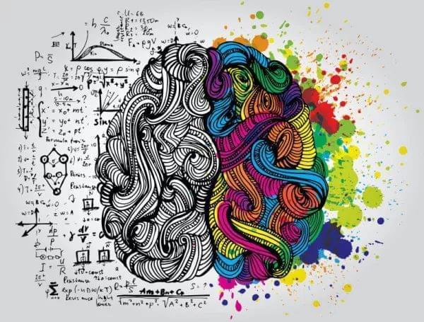 理性or情感?左右脑分工并无差别