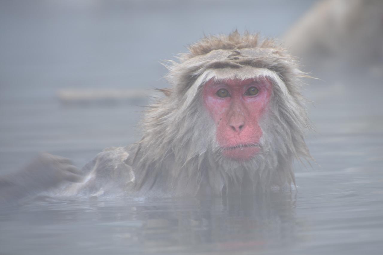洗了这么多年,你的洗澡方式都错了!