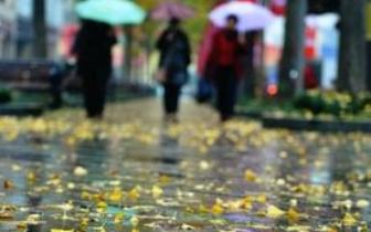 20日较强冷空气袭闽全省降雨 19日为假期最暖一天