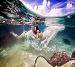海底拍的绝美婚礼照片