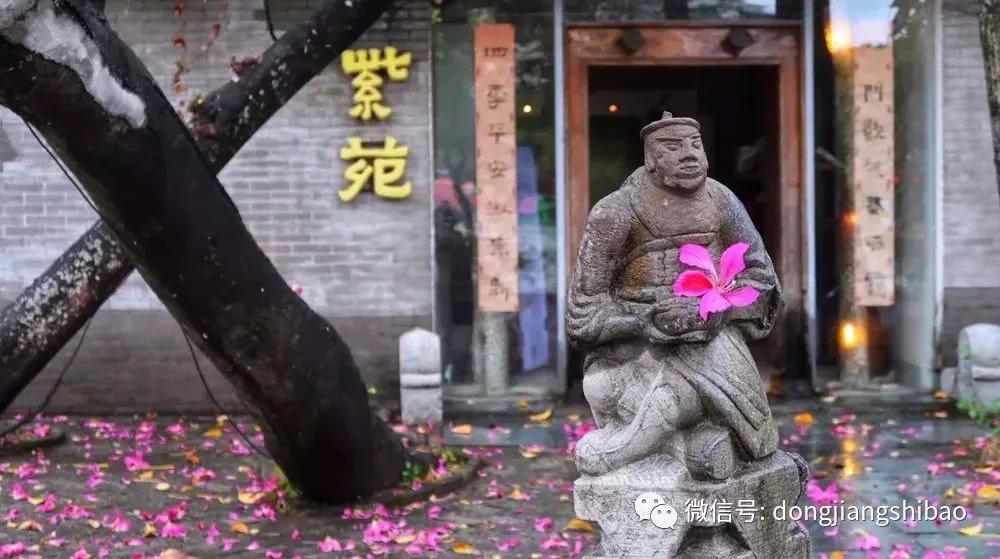 """这场""""雨""""刷爆惠州人朋友圈,你惊艳到了吗?"""