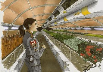 未来农场:从播种到收获将实现全自动化