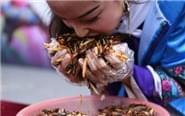 游客吃2斤油炸昆虫赢金条