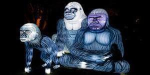 悉尼灯光音乐节将开幕 动物彩灯惹围观