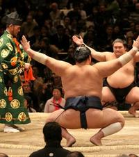 第34期:为啥相扑在日本备受推崇