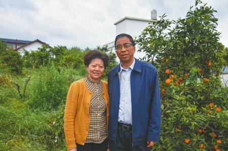 厅官退休只有10万积蓄回乡种果树成最有名农民