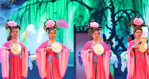 """河北省第十一届""""冀之光""""外国留学生汉语技能大赛"""