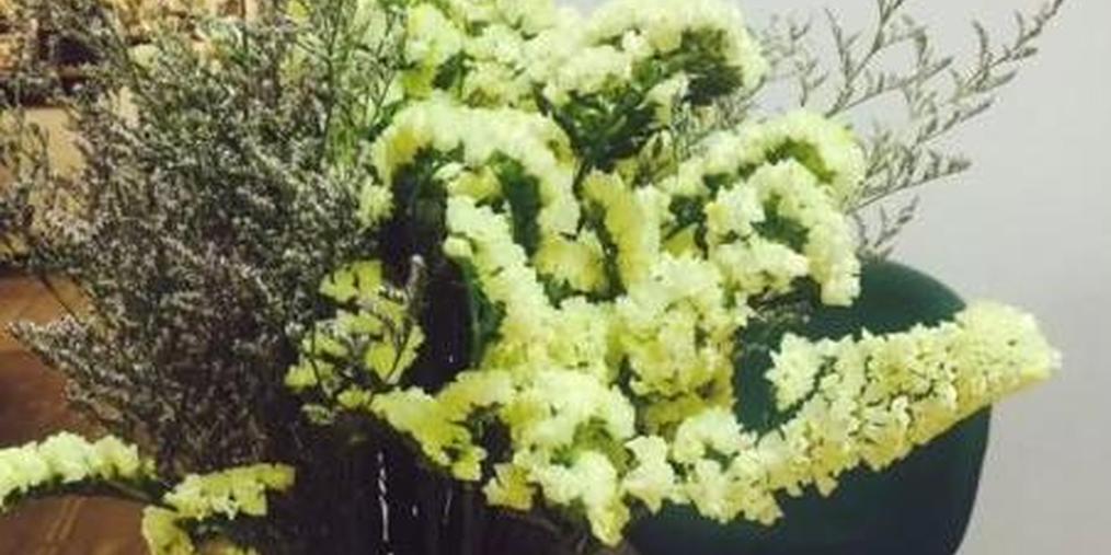 触霉头:网订鲜花收到白花黄花 客服却说没毛病