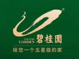 碧桂园签获约82.7亿元融资 将用于一般企业用途