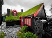 被草包围的北欧小屋
