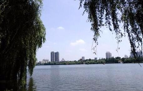 """荆州率先启动湖泊保护""""一湖一法"""""""