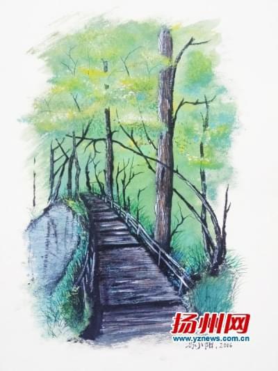 留学生的手绘扬州
