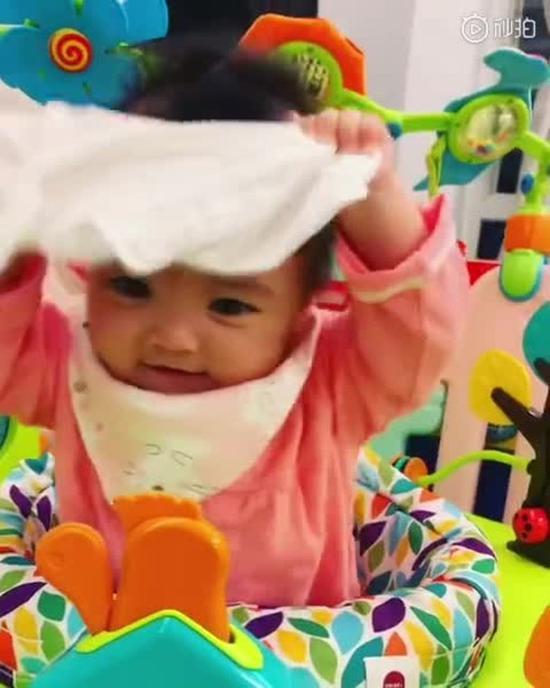 熊黛林独生子玩纱巾萌态极度。
