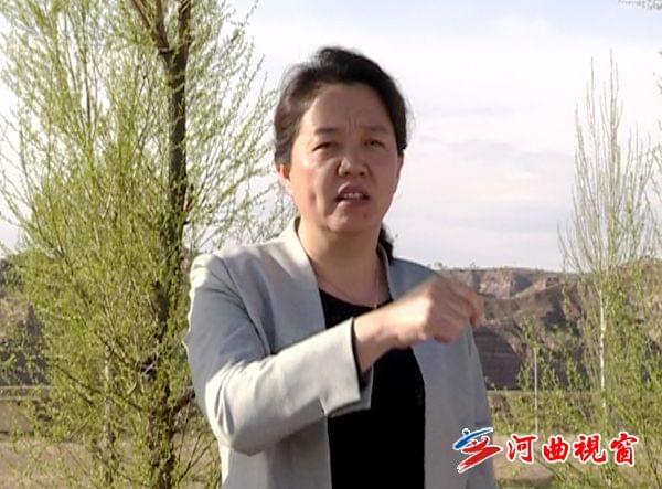 河曲县委副书记调研指导五城联创
