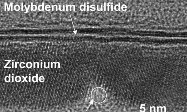 计算技术界的重大突破:1nm晶体管诞生的照片 - 1
