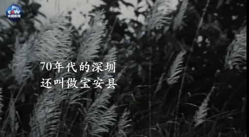从深圳到雄安