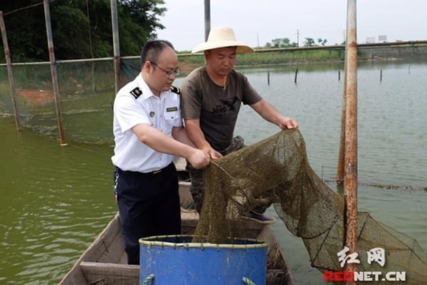 湖南省甲鱼首次出口香港