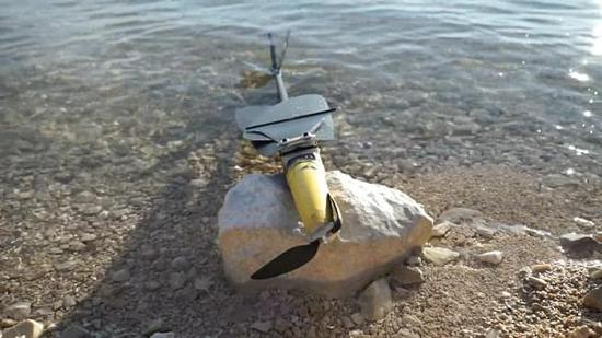 帝国理工学院研制可上天入海的海鸟无人机