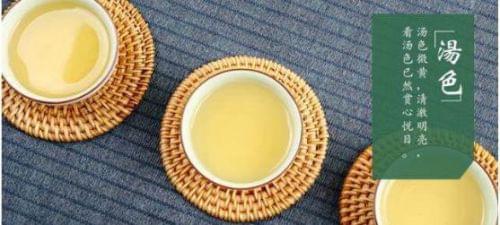 你真的会喝茉莉花茶么?